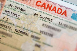 赴加生子办签证要警惕黑中介说出的百分百通过!